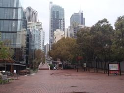 square in big city, australia, sydney
