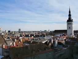 tallinn city tower roof view