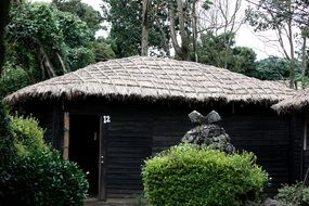 wooden cottage with a thatched roof