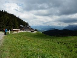 panorama of a picturesque alpine meadow