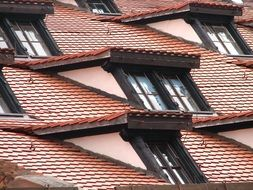 roof windows on the tiled roof
