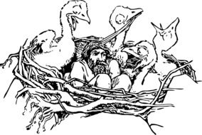 image of a man in a bird's nest
