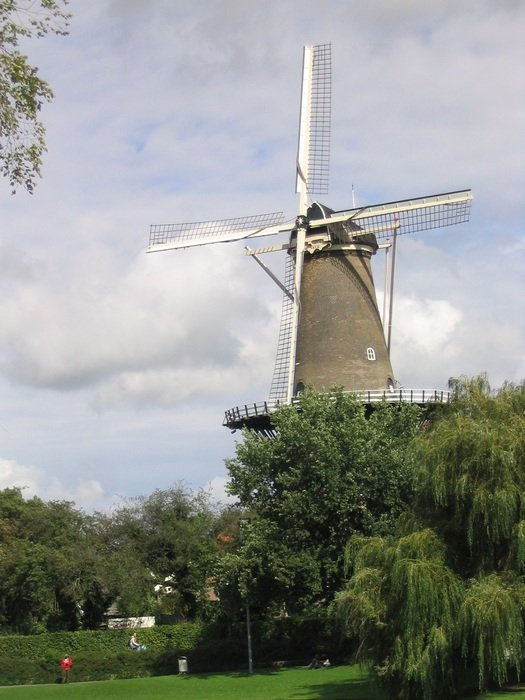 photo of a windmill among green trees in the Netherlands