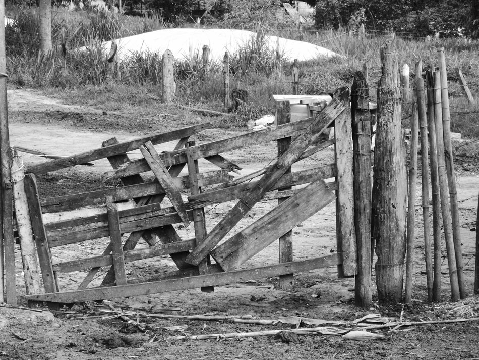 wooden ruined fence on a farm, black and white, brazil, roça