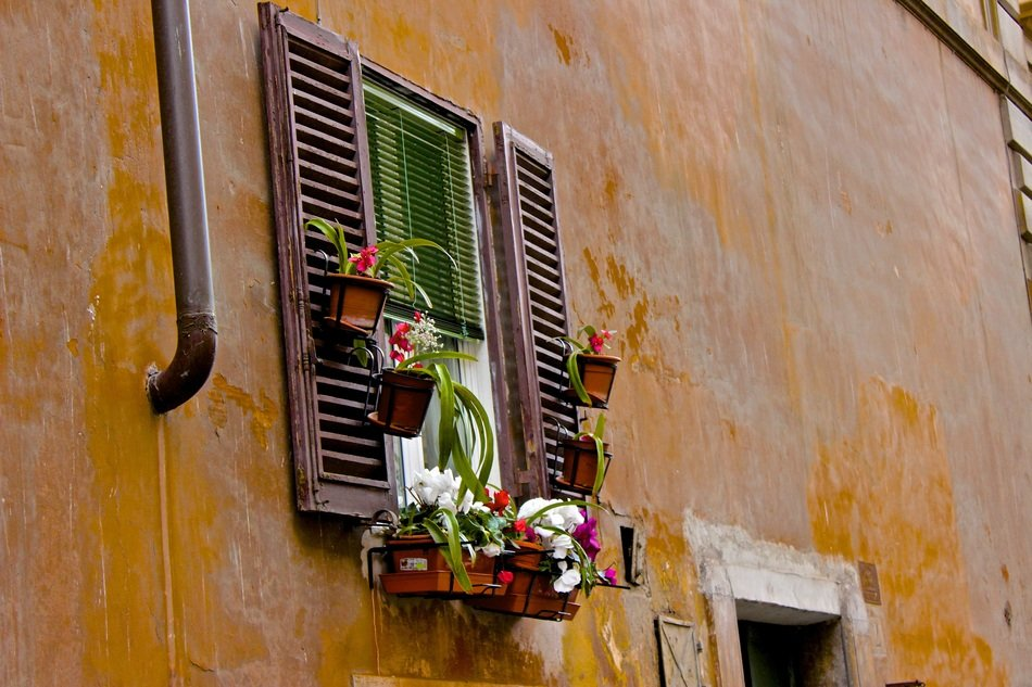 window with flowers on the facade of the old house