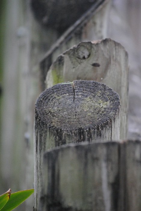wooden fence made of logs