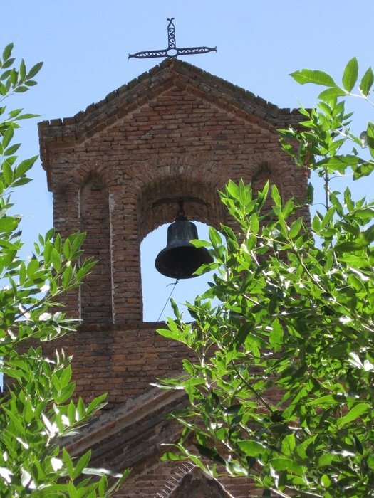 view of the bell tower through the foliage of trees