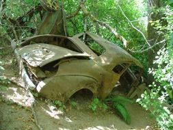abandoned vehicle after an accident, oregon, park