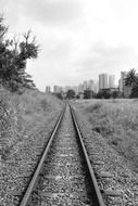 railway tracks monochrome photo
