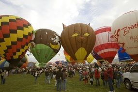 hot air balloons at a festival in New Mexico