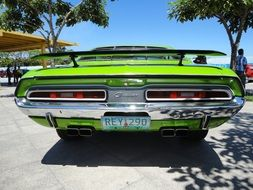 rear view of a green muscle car