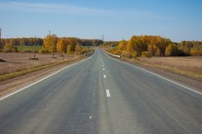 asphalt road in Siberia