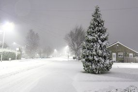 winter snow-covered street landscape