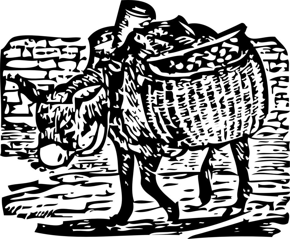 drawn donkey with bags