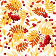 hot colors Seamless pattern with rowan leaves and rowanberries