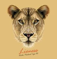 Vector Portrait of a Lioness