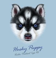 Vector Illustrative Portrait of a Husky Puppy