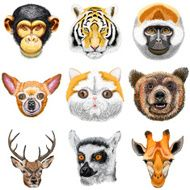 Set of animals Monkey chimpanzee tiger chihuahua cat bear
