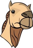 head of a camel as a graphic image