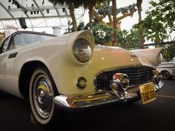 classic car automobile retro 1956 hollywood