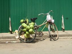 coconut bicycle