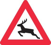 black deer on the road sign