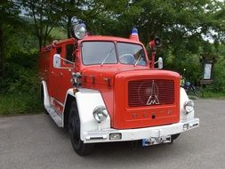 fire truck near the forest