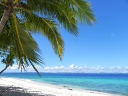 white sandy tropical beach in philippines