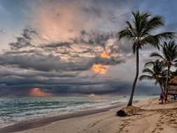 tropical beach with palm trees at sunrise