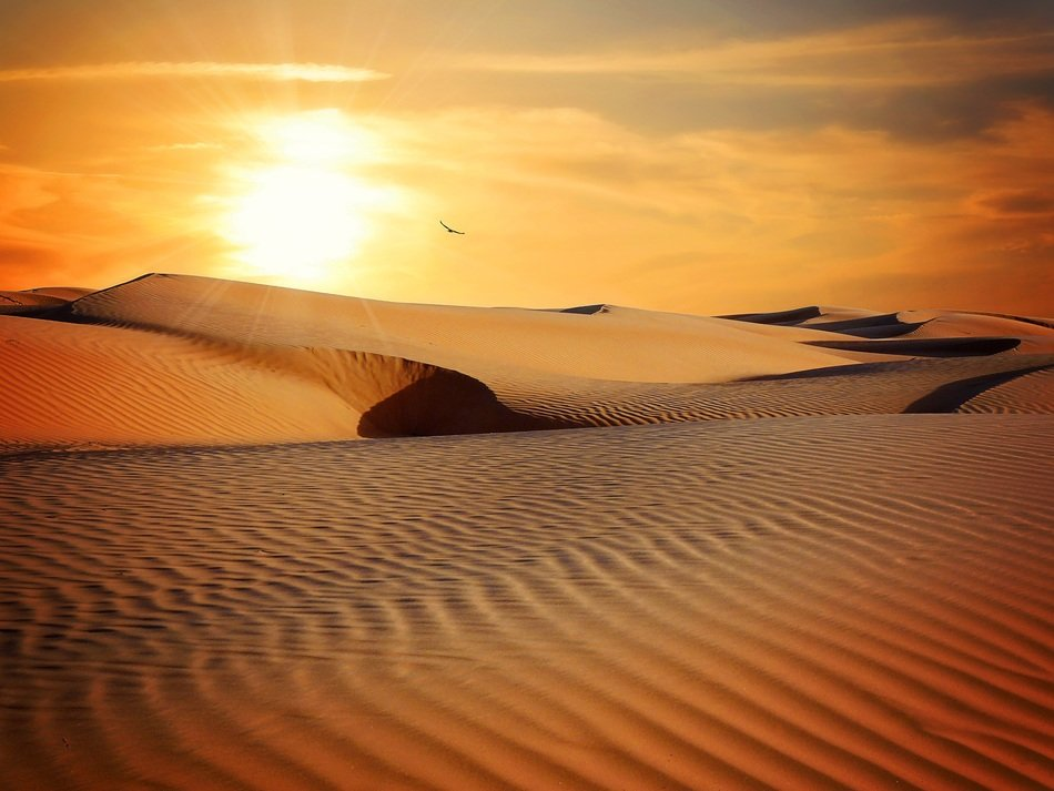sunset sand landscape
