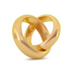 Realistic golden couple ring Vector object