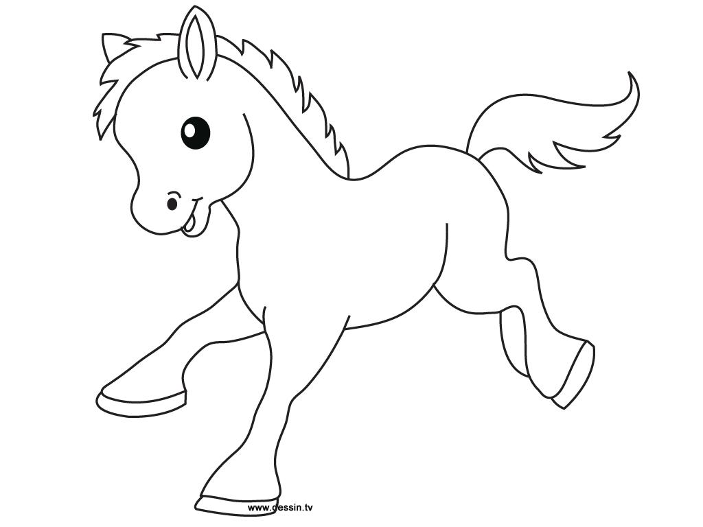 Pencil Drawn Foal Free Image