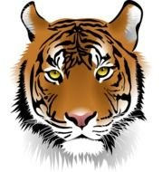 tiger head in computer graphics