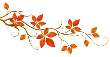 Beautiful fall leaves clipart