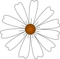 White Daisy At Clkercom Vector Online Royalty