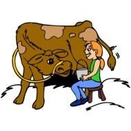 clipart of milking a cow