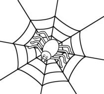 Halloween Spiders Pictures drawing