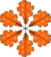 orange color oak Leaves, drawing