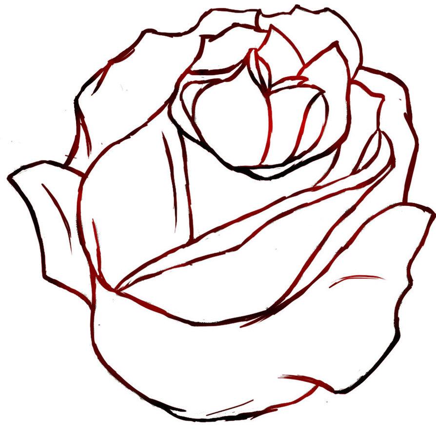 Картинки розы которые легко нарисовать
