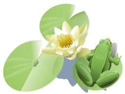 painted green frog and white lotus