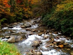 scenic smoky mountains
