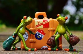 funny frog figures travel holiday