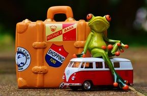 funny figure of the frog travel holiday