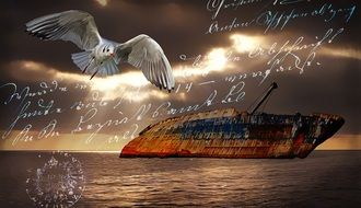 greeting card with ship and seagull