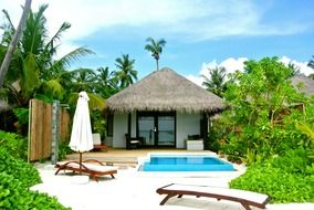 bungalow surrounded by palm trees in the Maldives