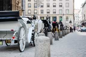 Carriages for walks in the streets, Austria
