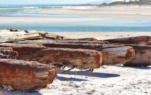 rusted wood on the beach