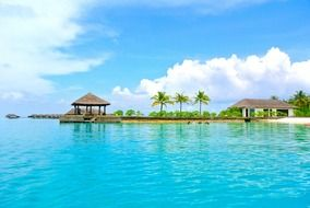 Maldives coconut tree resort romance