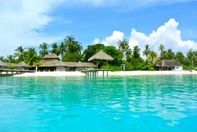 coconut tree resort Maldives