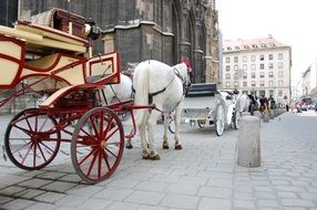 Cart with horses in Vienna